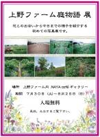 スクリーンショット(2013-07-30 16.26.40).jpg